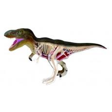 Объемная анатомическая модель Тираннозавр, 4D Master 26092