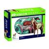 Объемная анатомическая модель Лошадь, 4D Master 26101