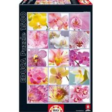 Пазл  Цветочный коллаж 1500 элементов, EDUCA EDU-16302