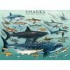 Пазл  Акулы 1000 элементов, EuroGraphics 6000-0079