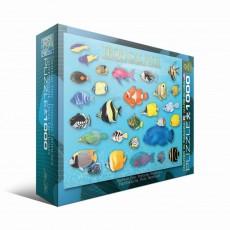 Пазл  Тропические рыбы 1000 элементов, EuroGraphics 6000-1173