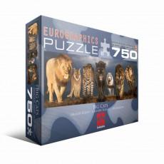 Пазл  Большие кошки 750 элементов, EuroGraphics 6005-0297
