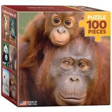 Пазл  Орангутанг с детенышем 100 элементов, EuroGraphics 8104-0638