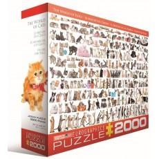 Пазл  Мир кошек 2000 элементов, EuroGraphics 8220-0580