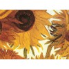 Пазл Пазл Двенадцать подсолнухов (фрагмент) Винсент ван Гог, EuroGraphics 8000-0477