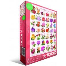 Пазл  Розы 1000 элементов, EuroGraphics 6000-0593