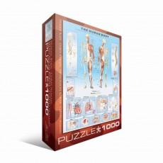 Пазл Двенадцать подсолнухов Винсент Ван Гог, 100 элементов, EuroGraphics 6000-1000