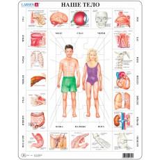 Пазлы рамки-вкладыши Наше тело, серия Макси Larsen, Larsen OB1